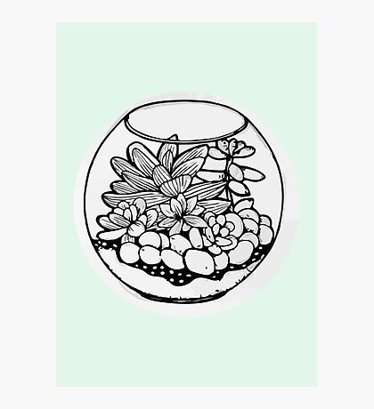 Fred the Succulent Photographic Print