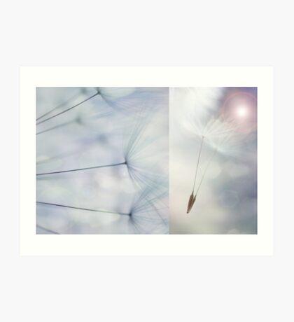 Dandelion Diptych #2 Art Print