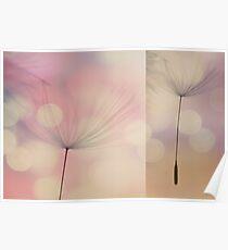 Dandelion Diptych #1 Poster