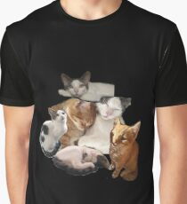 cut and paste cats Graphic T-Shirt