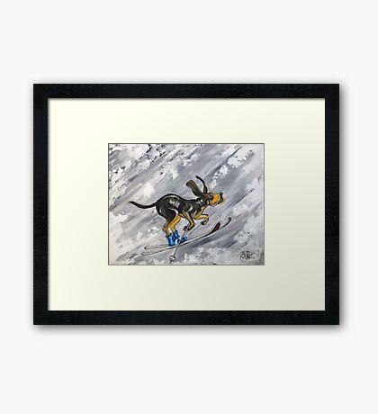 Winter Hound Framed Print