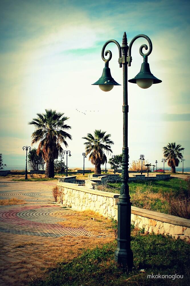 palm tree heaven by mkokonoglou