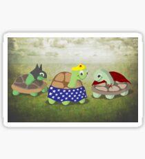 Turtles Cosplay Sticker