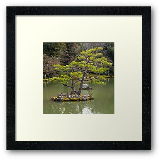 Japanese garden by Cebas