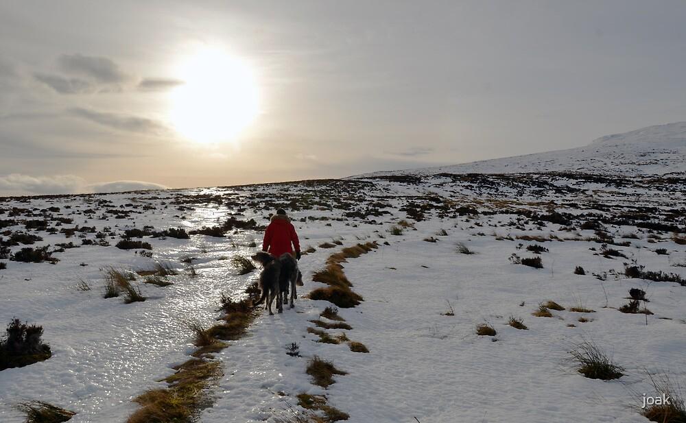 the long walk home by joak