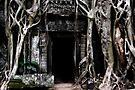 Enter, Cambodia  by Michael Treloar