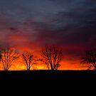 Plain Sunrise 2 by John  Sperry