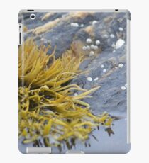 Seaweed Amongst the Rocks iPad Case/Skin