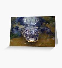Crocodile Greeting Card