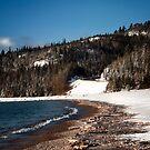 Winter Shore by Karri Klawiter