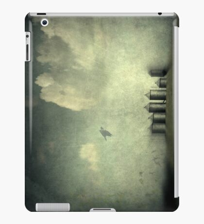 Silos of the Praires iPad Case/Skin