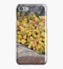 Seaweed Between Rocks iPhone Case/Skin