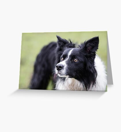 Pointy Ears Greeting Card