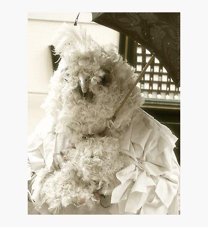 Carneval: Big Bird VRS2 Photographic Print
