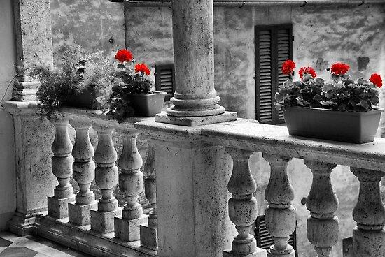 Good Morning Siena-Tuscany by Deborah Downes