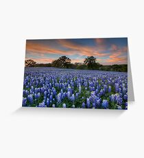 Texas Bluebonnets in the Hill Country 1 Greeting Card