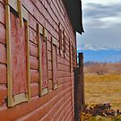 Barn in Erie Colorado by Luann wilslef