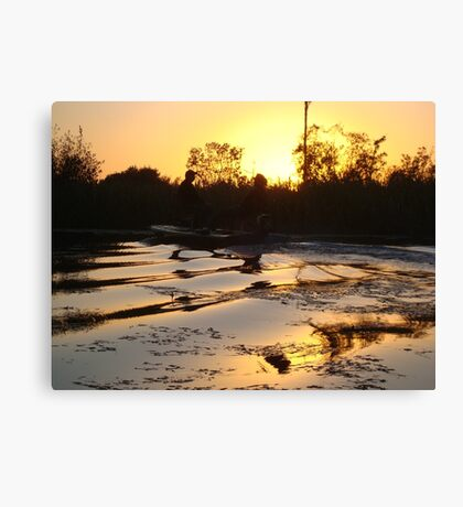 Fish Stories Canvas Print