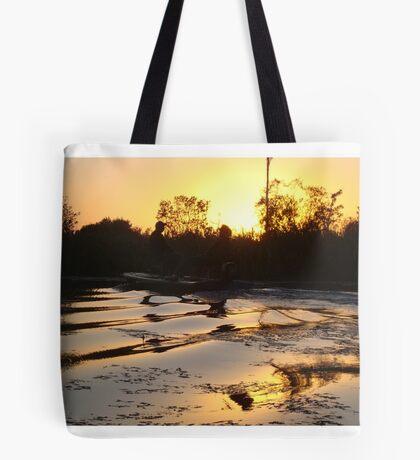 Fish Stories Tote Bag