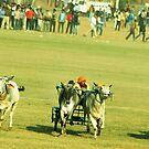 The race by Dr. Harmeet Singh