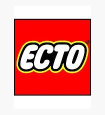 LEGO x ECTO v2 Photographic Print