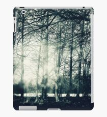 Faerie Wood iPad Case/Skin