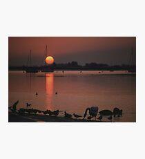 Waterline Photographic Print