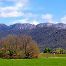 Farm Near Mnt Bufallo by Glen Johnson