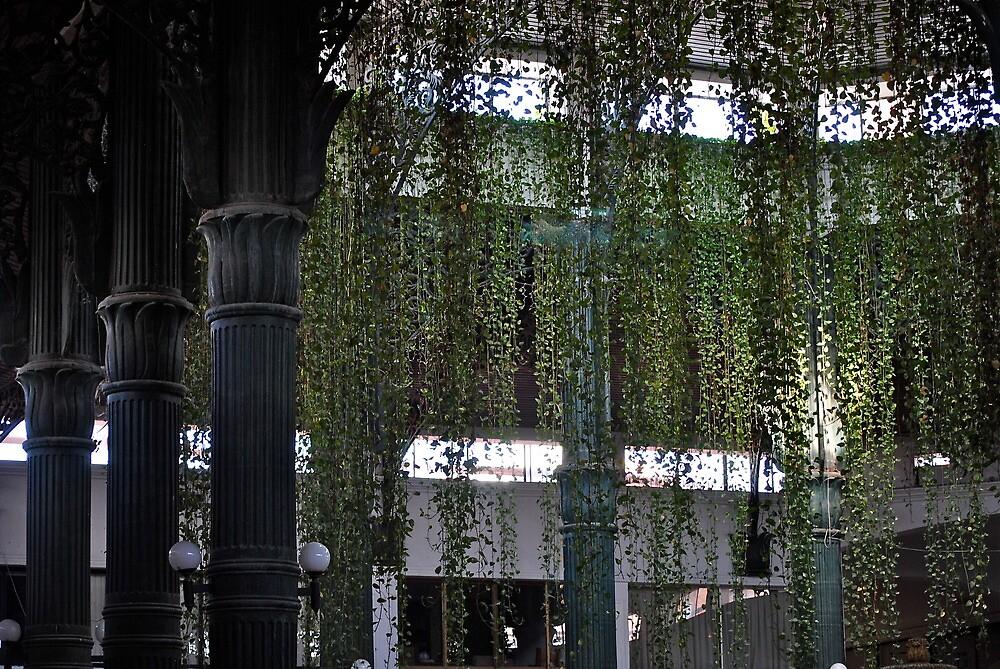 hanging vines by richard  webb