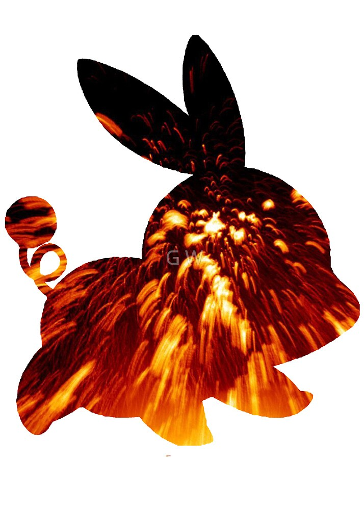 Tepig used Incinerate by G W