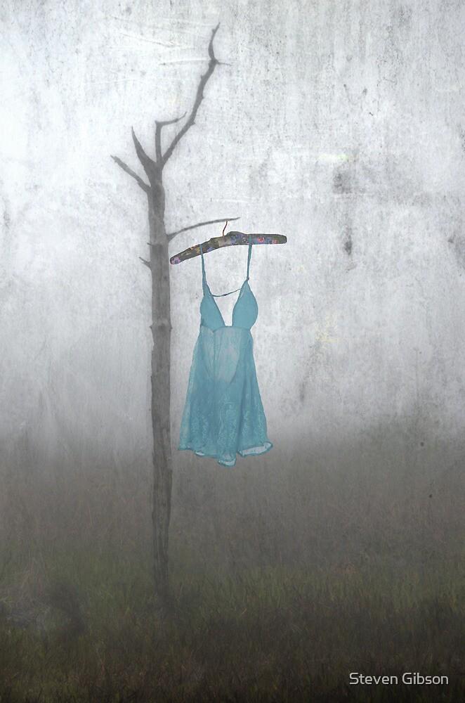 Blue by Steven Gibson