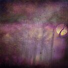 Purple Dream by marina63