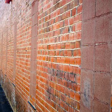 Brick Wall by jlkauffman