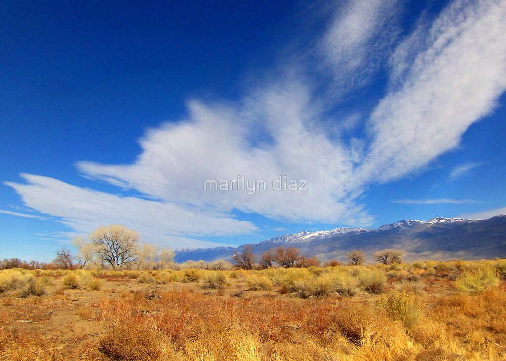 Something About The Clouds by marilyn diaz
