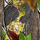 Real Oak by JP Grafx