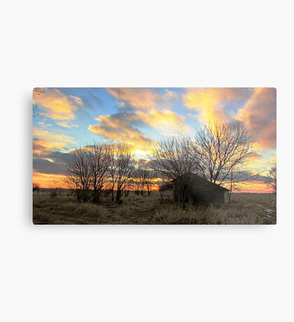 Pure Dakota Metal Print