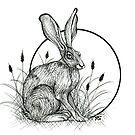 Jack Rabbit  by Rose Swenson