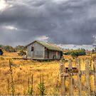 Deserted Railway Station Nimmitabel NSW Rural Goods Shed by Kym Bradley