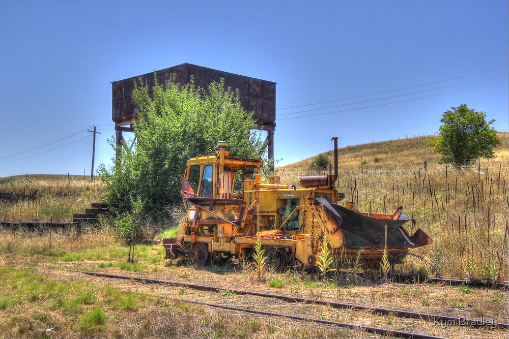 Its Been A While  Cooma Railway NSW by Kym Bradley