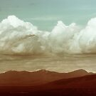 Long Horizon by Dana DiPasquale