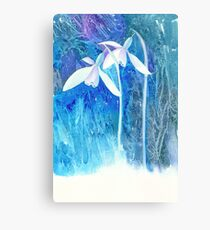 Snowdrop arrival! Canvas Print
