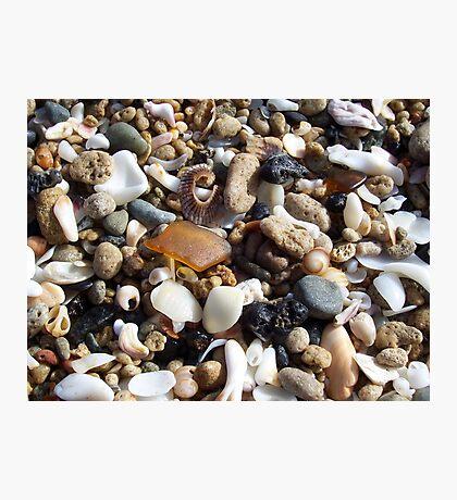 Honey Amber Sea Glass and Tiny Seashells and Pebbles Photographic Print