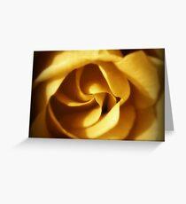 NOVEMBER ROSE Greeting Card