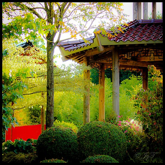 The Chinese Garden by johnjgt