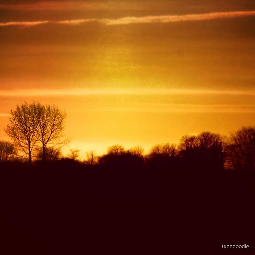 Bright Sky by weegoodie