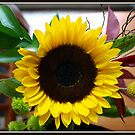 A Flower's Sunny Face by Mikell Herrick