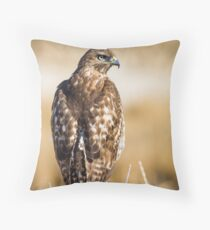 Red-tailed Hawk: Hunting the Ditch Banks Throw Pillow