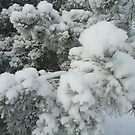 ~that is what i call winter~ by KatrinKirieshka