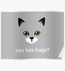 Can has hugs? Poster