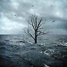 Sea Tree by error23